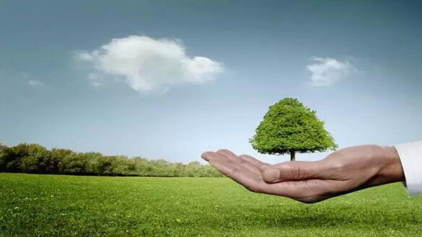 绿色建筑节能材料发展趋势探析