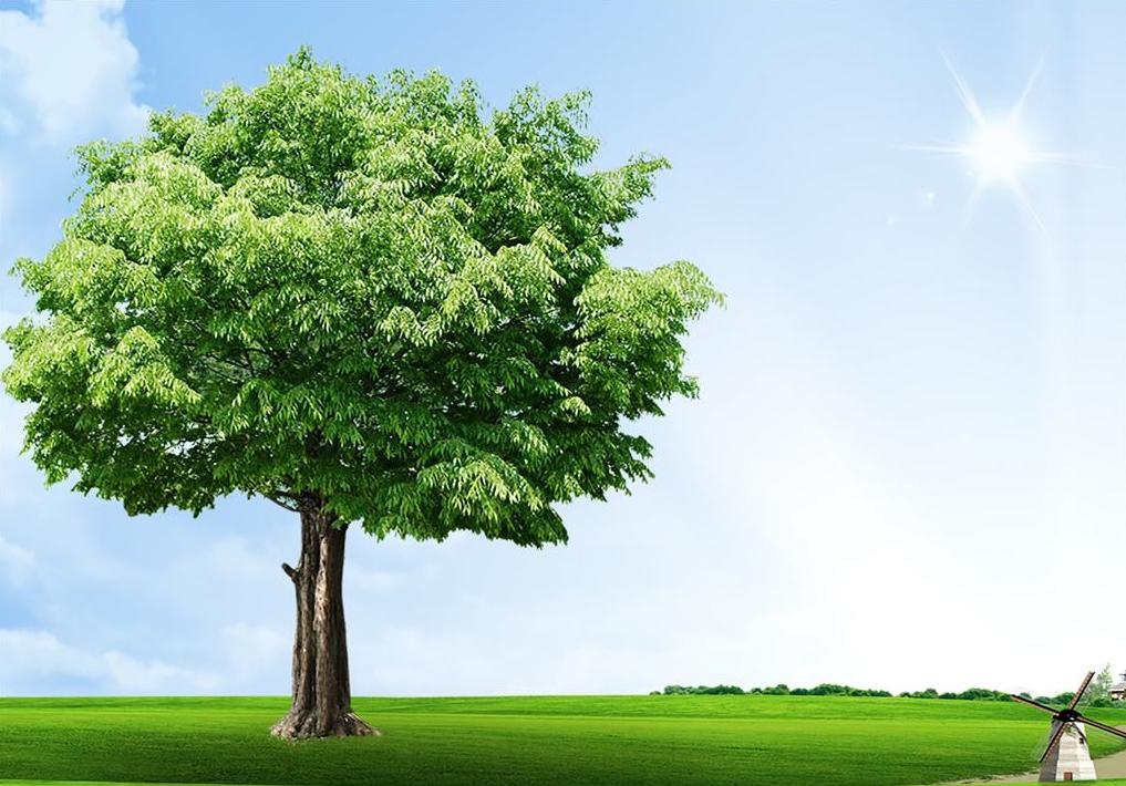 """应对气候变化 """"绿色建筑""""促减排"""